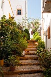 Steps and Flowers in Patmos Greece